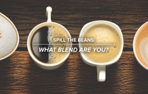 Spill the Beans: What Blend are you?